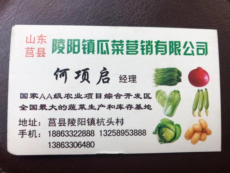 莒县陵阳项启果蔬种植专业合作社
