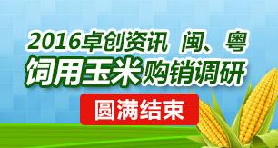 2016卓创资讯闽、粤饲用玉米购销调研