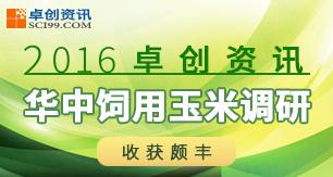 2016卓创资讯华中饲用玉米调研