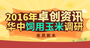 2016卓创资讯华中玉米调研收获颇丰