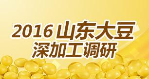 2016山东大豆深加工调研