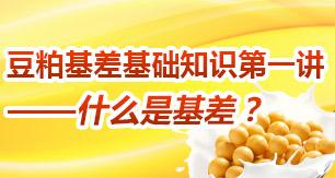 豆粕基差基础知识第一讲——什么是基差?