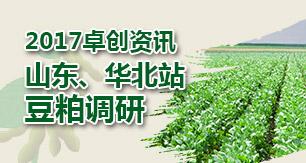 2017卓创资讯山东、华北站调研
