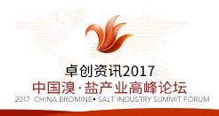 2017中国溴·盐产业高峰论坛