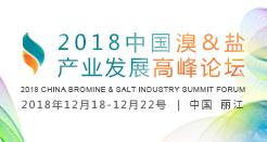 2018中国溴&盐产业发展高峰论坛