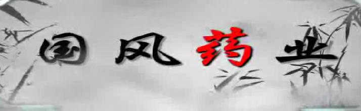 青岛国风药业