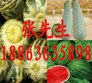 山东潍坊水果代办